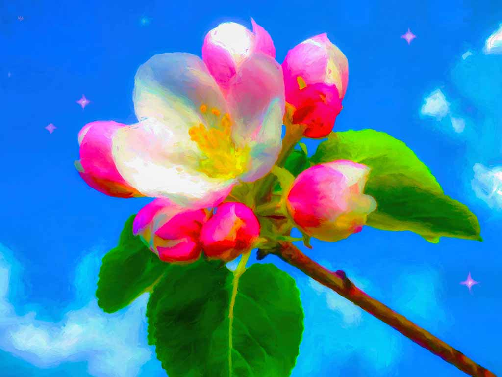 Apple blossom in the Sky in a digital painting on Art Canvas Print by Wieslaw Sadurski