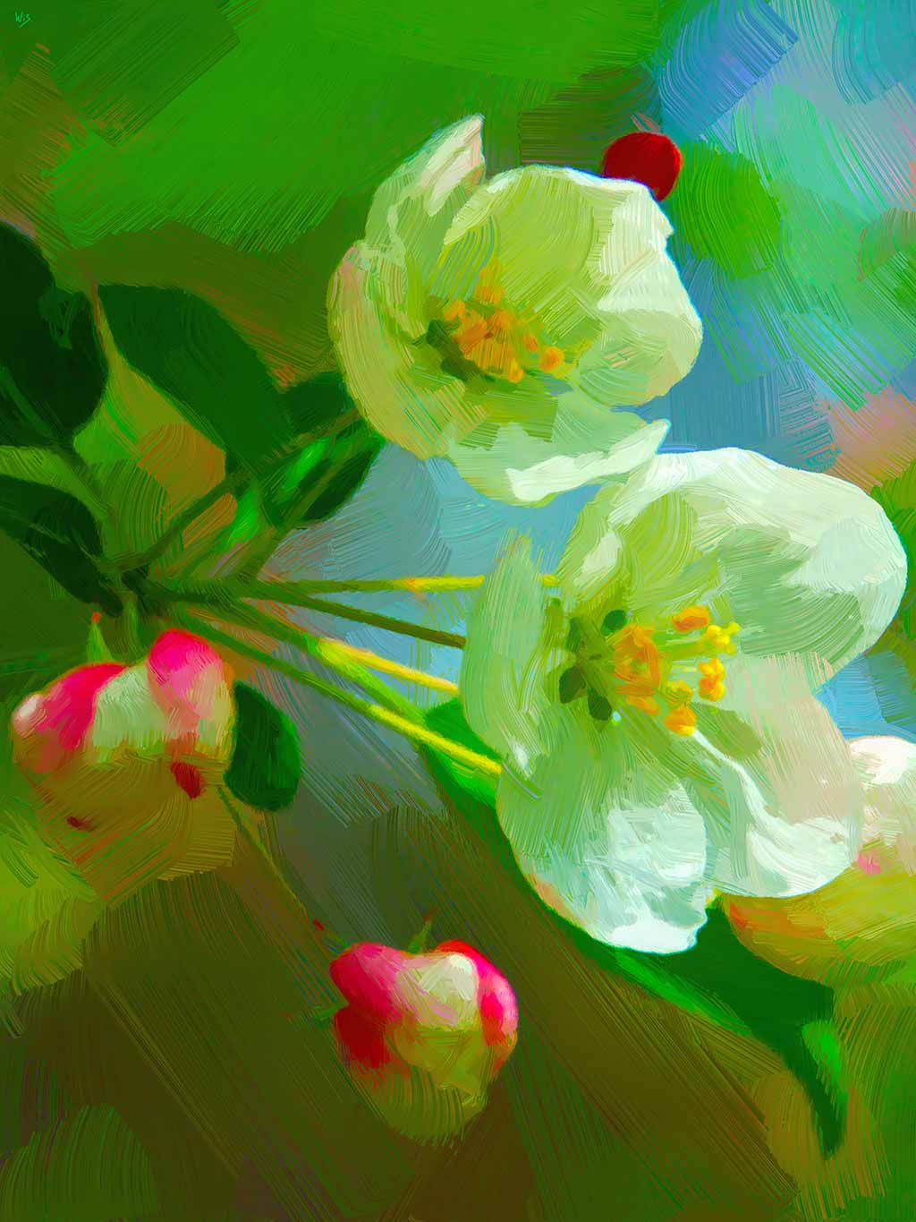 Apple Flowering in a digital painting on Art Canvas Print by Wieslaw Sadurski