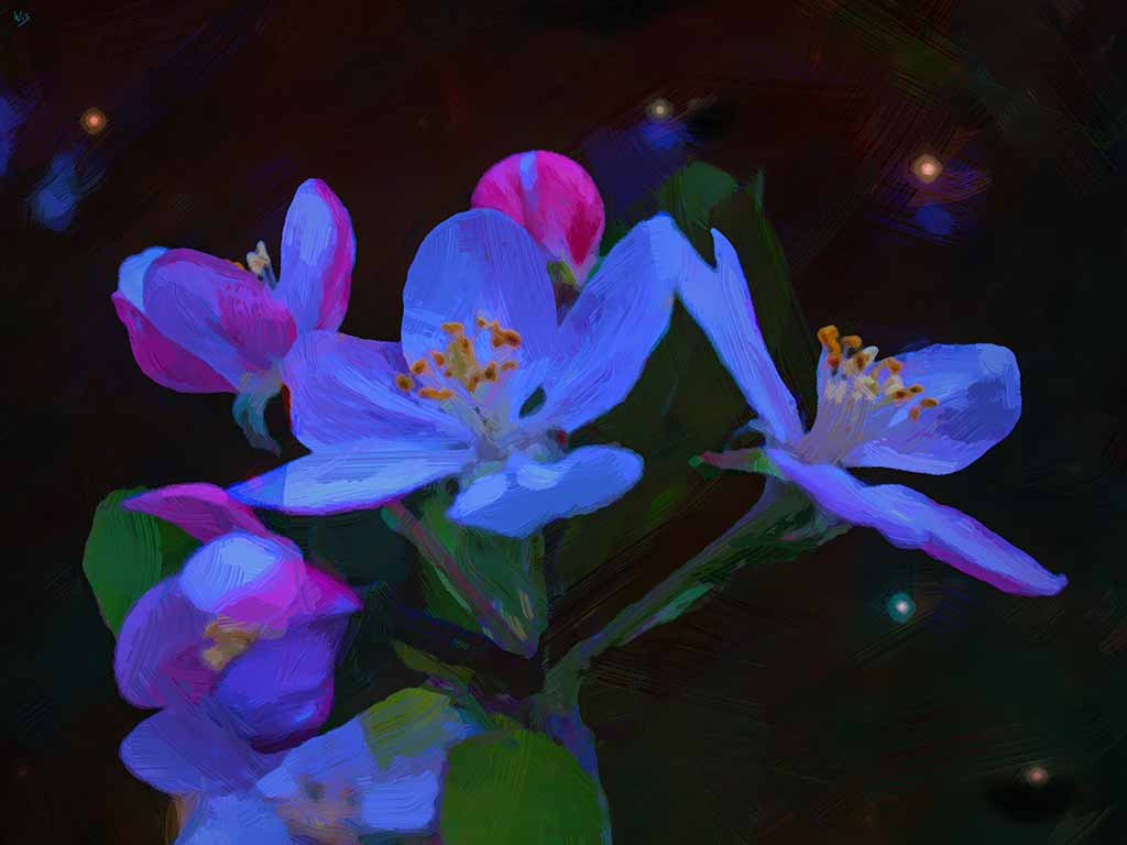 Blue Flowers Starry Night in a digital painting on Art Canvas Print by Wieslaw Sadurski