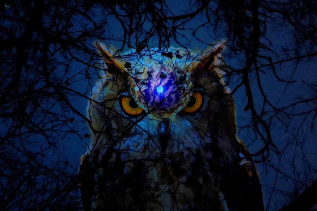 Owl with the full moon as the third eye - romantic digital oil painting and Art Canvas Print by Wieslaw Sadurski