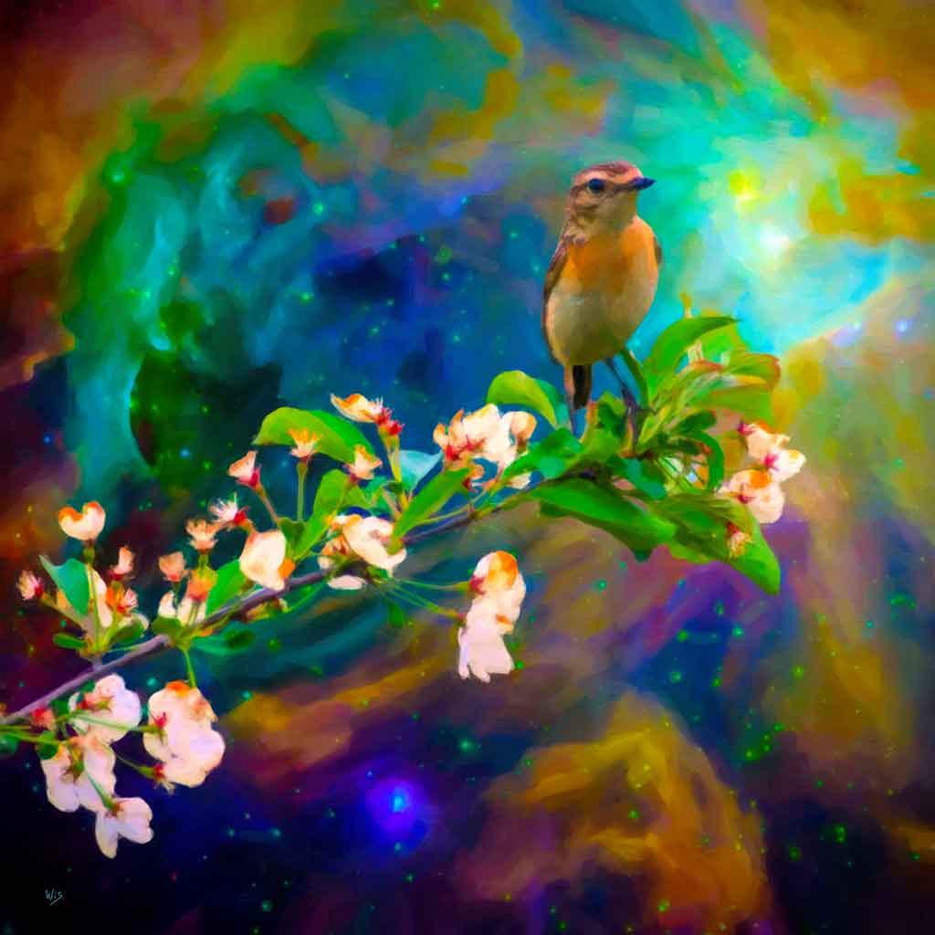 Bird on Twig in outer space, digital oil painting and Art Canvas Print by Wieslaw Sadurski