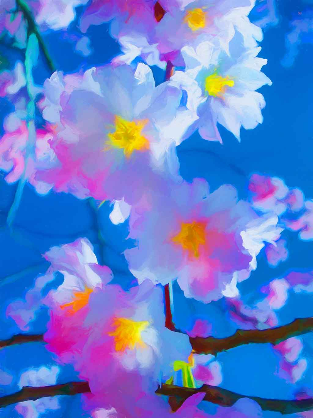 Cherry Flowers Blue Sky, digital oil painting and Art Canvas Print by Wieslaw Sadurski