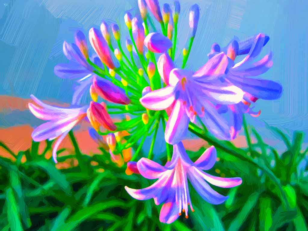 White-purple Agapanthus Flowers and leaves bush against the sky; painting by Wiesław Sadurski