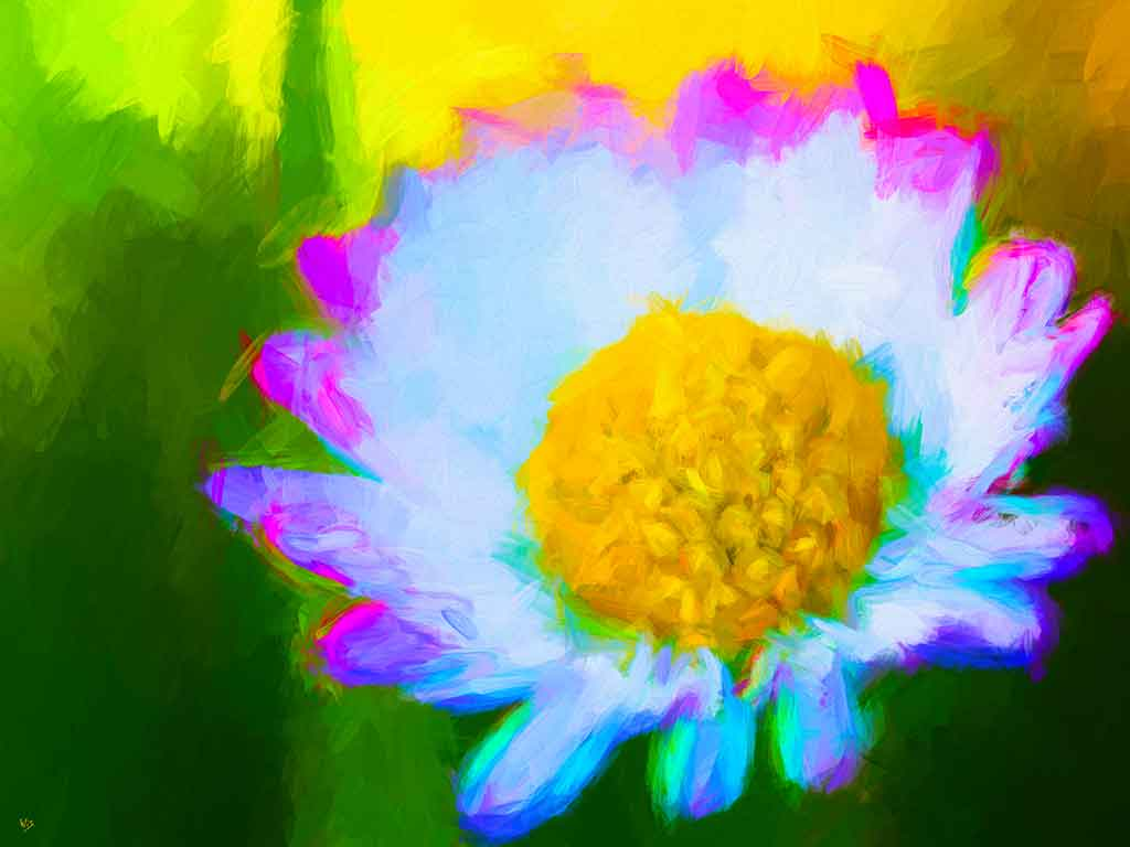 Wild Daisy Flower on green sky in a digital oil painting on Art Canvas Print by Wieslaw Sadurski
