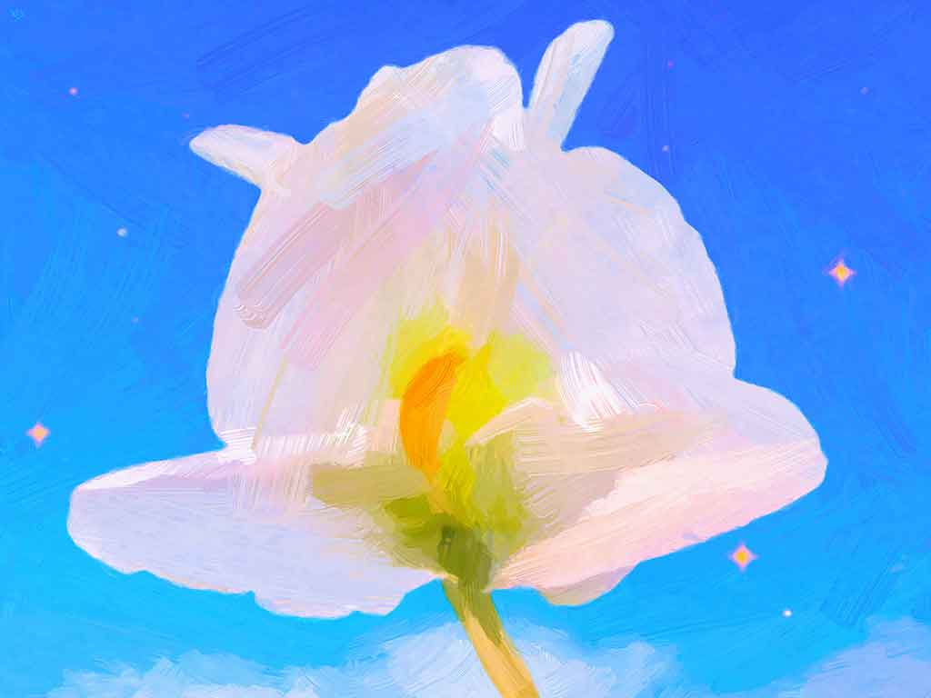 Single White Flower against blue starry sky, digital Oil Painting on Art Canvas Print by Wieslaw Sadurski