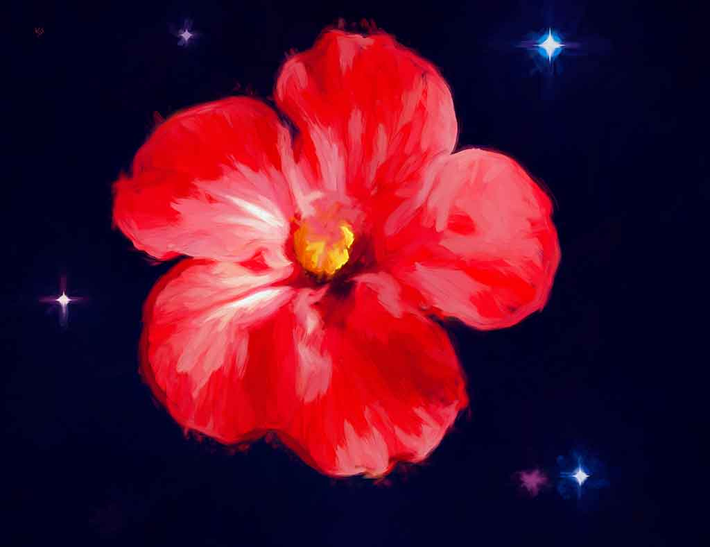 Red Hibiscus Flower in starry night, digital painting on Art Canvas Print by Wieslaw Sadurski