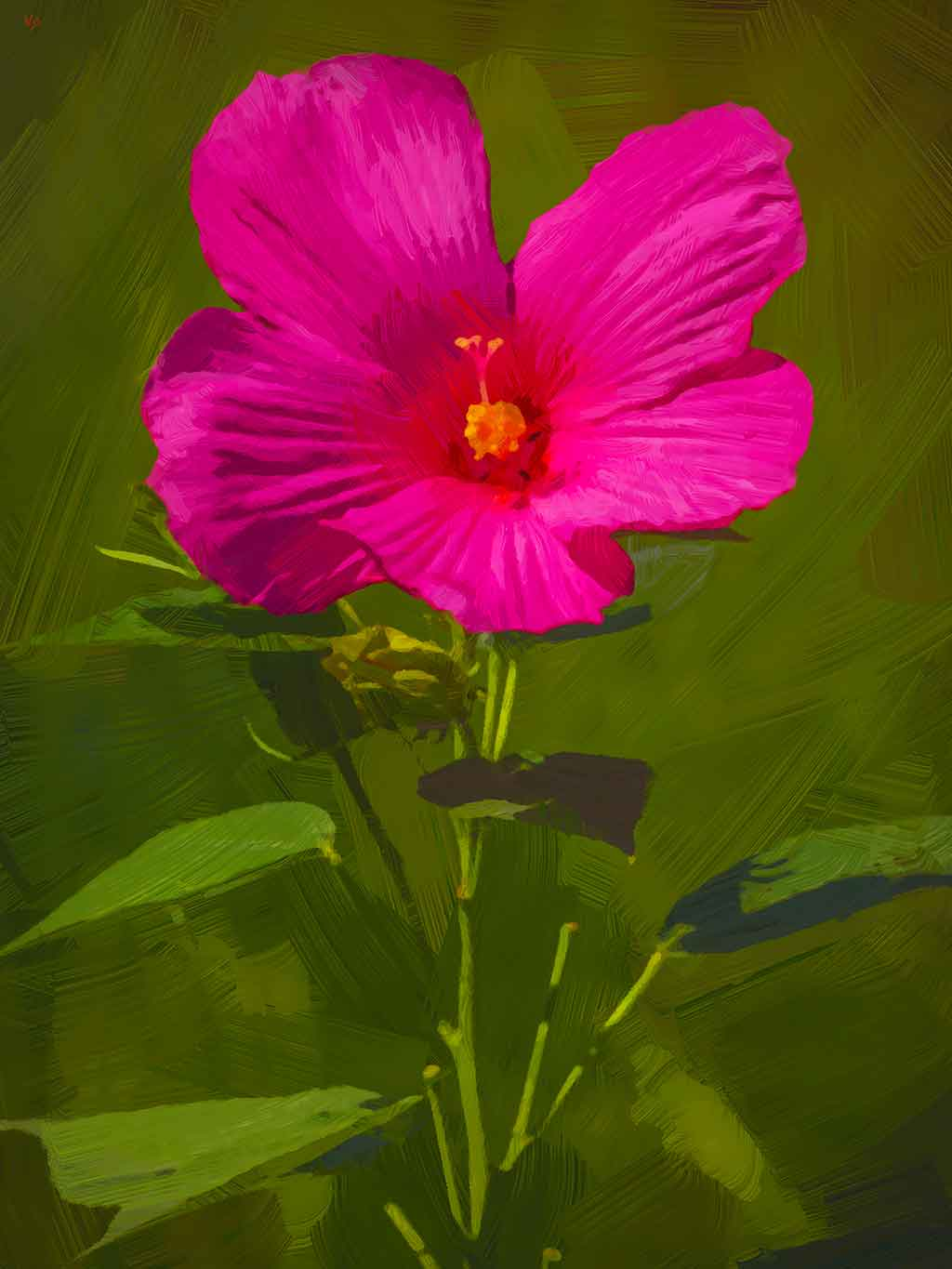 Red Swamp Hibiscus Flower on green, digital Oil Painting on Art Canvas Print by Wieslaw Sadurski