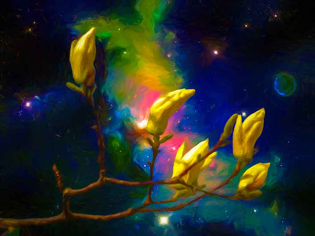 Magnolie Buds Outer Space with blue starry sky in the back, digital Oil Painting on Art Canvas Print by Wieslaw Sadurski