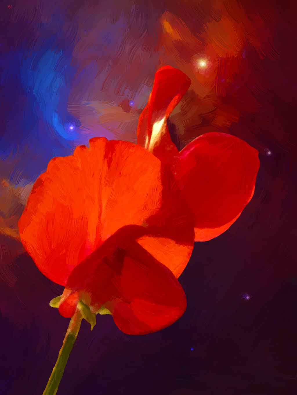 Vetch Flower in Outer Space, digital Oil Painting on Art Canvas Print by Wieslaw Sadurski