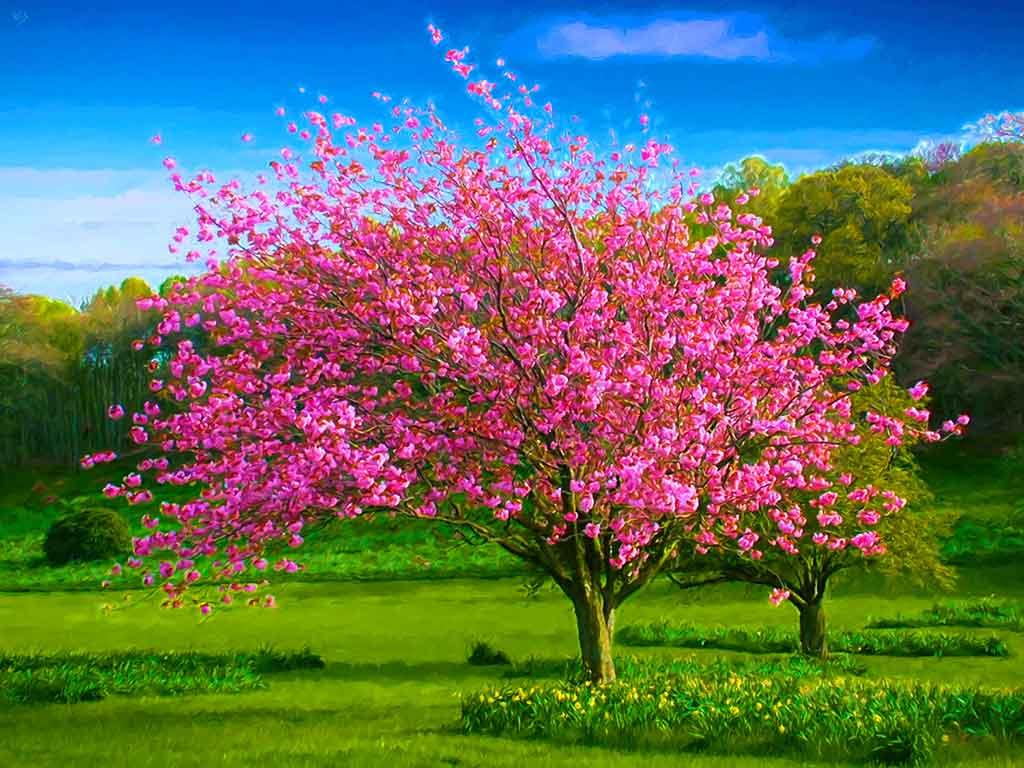 Spring Paintings In 4 Seasons Landscapes
