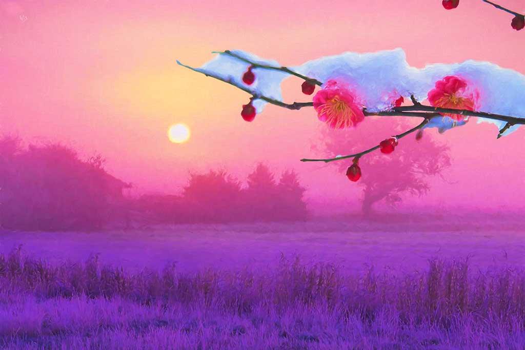Sunset snowy fields, trees horizon house in violet shades, snow on Blossoming Cherry twig; Wiesław Sadurski
