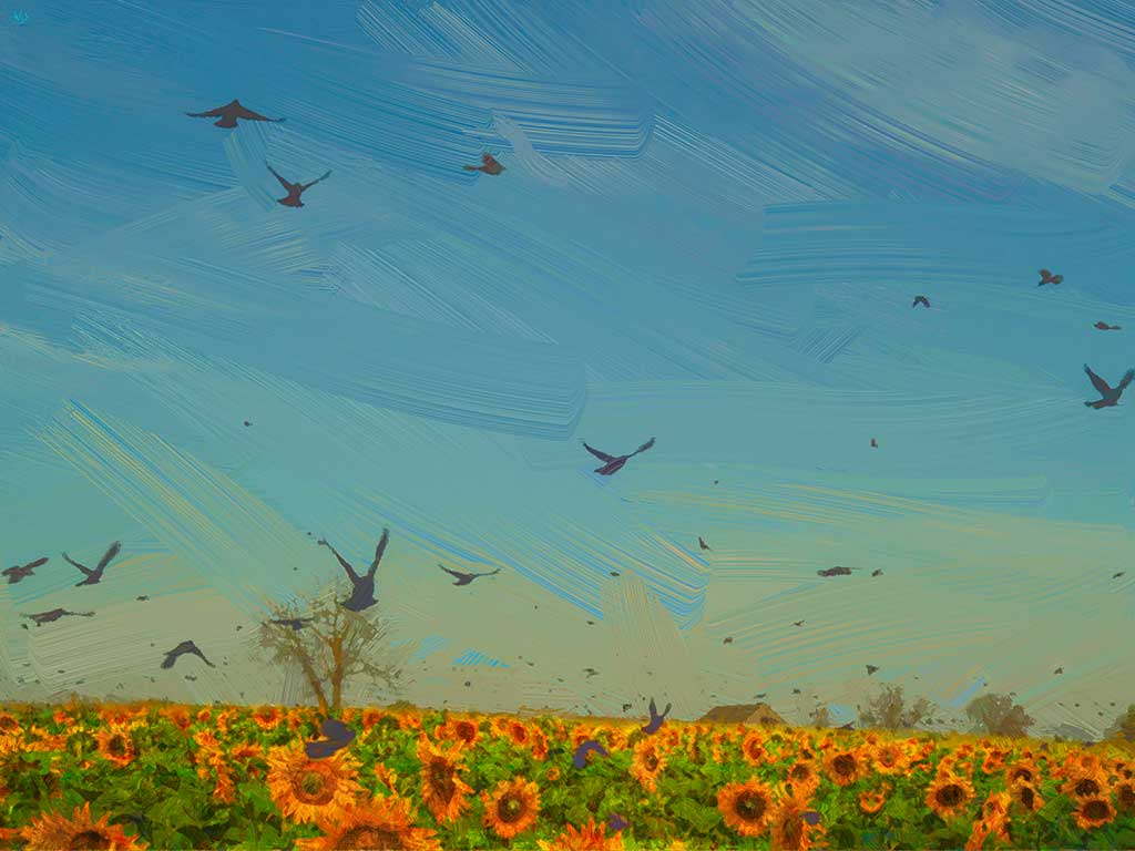 Sunflower Field with Birds Landscape, digital oil painting on Art Canvas Print by Wieslaw Sadurski