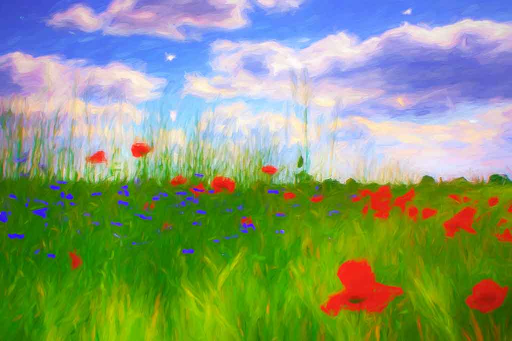 Summer Flower Field Landscape, digital oil painting on Art Canvas Print by Wieslaw Sadurski