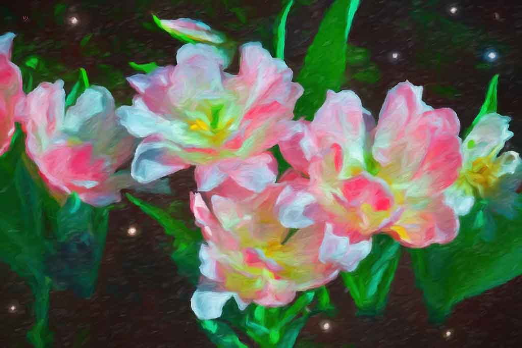 Pink Lilies in Cosmos, digital painting on art canvas print by Wieslaw Sadurski