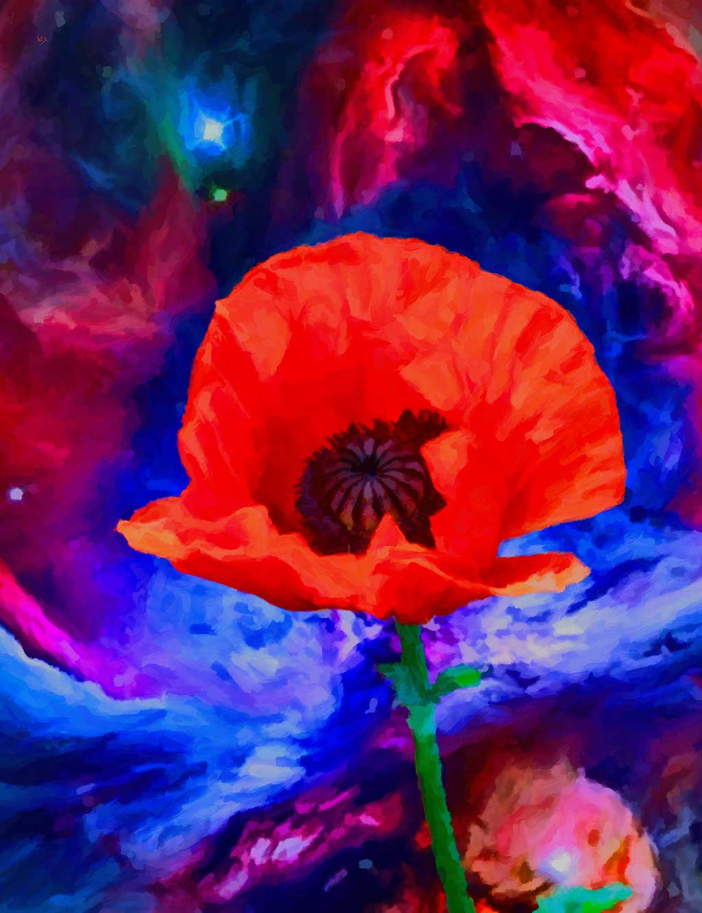 Poppy Flower against Nebula, digital painting on Art Canvas Print by Wieslaw Sadurski