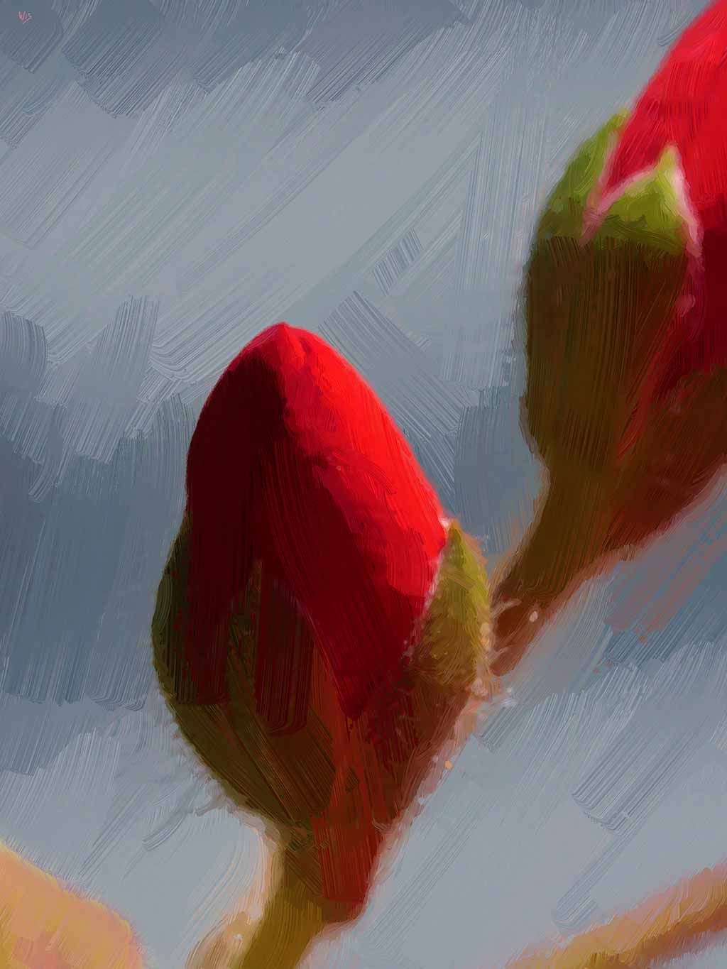 Two Roses Buds on gray in digital oil painting by Wieslaw Sadurski