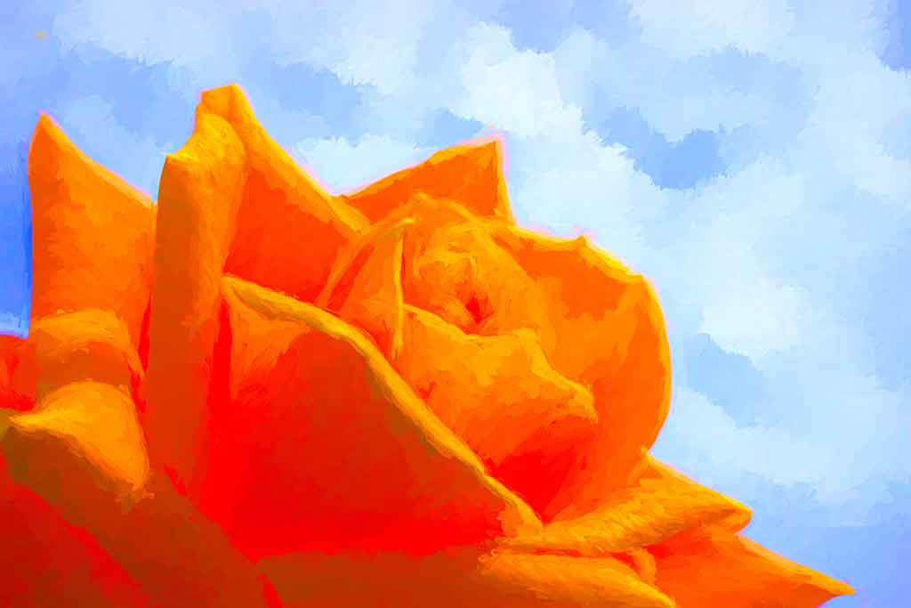 Huge Orange Rose, digital oil painting and art canvas print by Wieslaw Sadurski