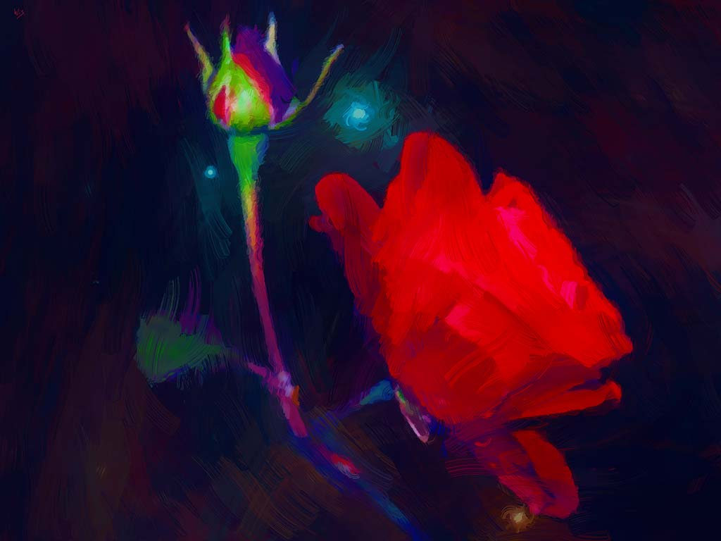 Red Rose Dark Space, digital oil painting and art canvas print by Wieslaw Sadurski