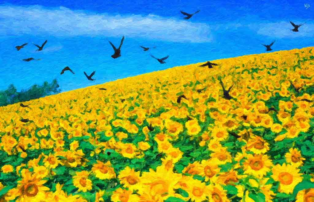 Sunflower Field and Birds landscape in a digital oil painting on Art Canvas Print by Wieslaw Sadurski