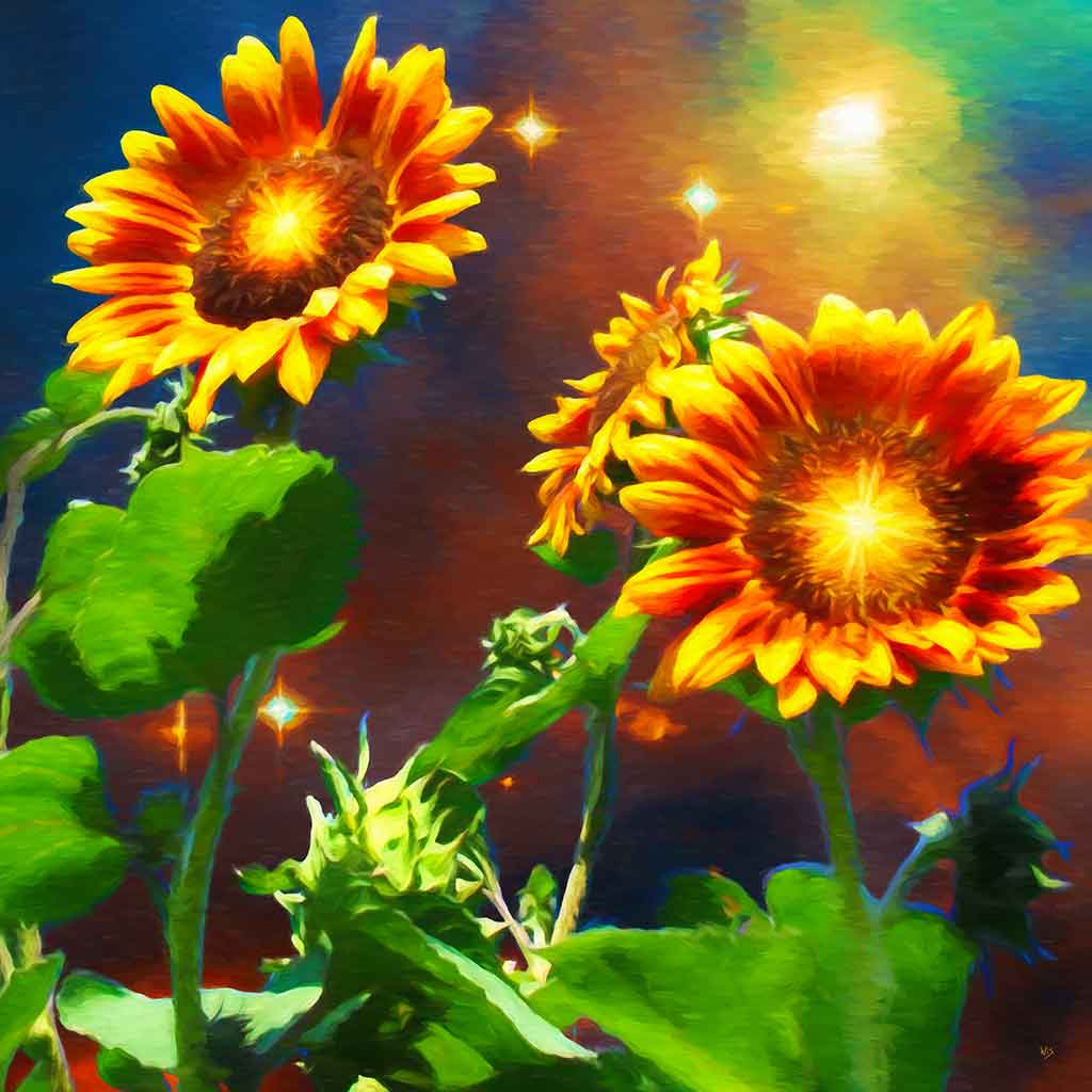 Cosmic Sunflowers and Stars in a digital oil painting on Art Canvas Print by Wieslaw Sadurski