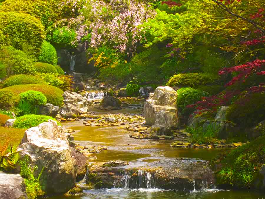 Waterfall and flowering trees Myōshin-ji Zen Garden Kyoto, photo by Wieslaw Sadurski