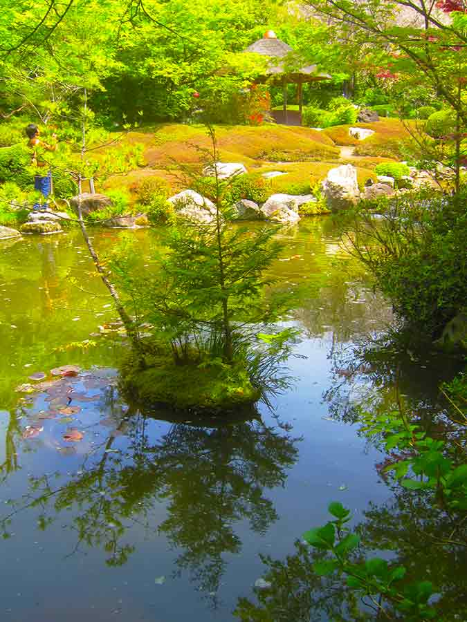 Pond Myōshin-ji Zen Garden Kyoto, photo by Wieslaw Sadurski