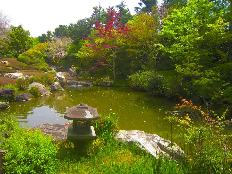 Myōshin-ji Zen Garden Pond, photo by Wieslaw Sadurski