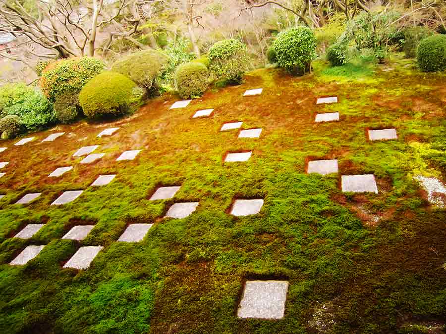 Stones pattern in moss Northern Tofukuji Zen Garden, photo by Wieslaw Sadurski