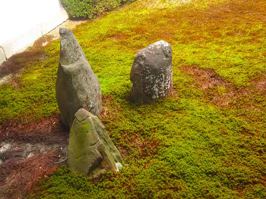 Moss and Stones in Tofukuji Western Zen Garden, photo by Wieslaw Sadurski