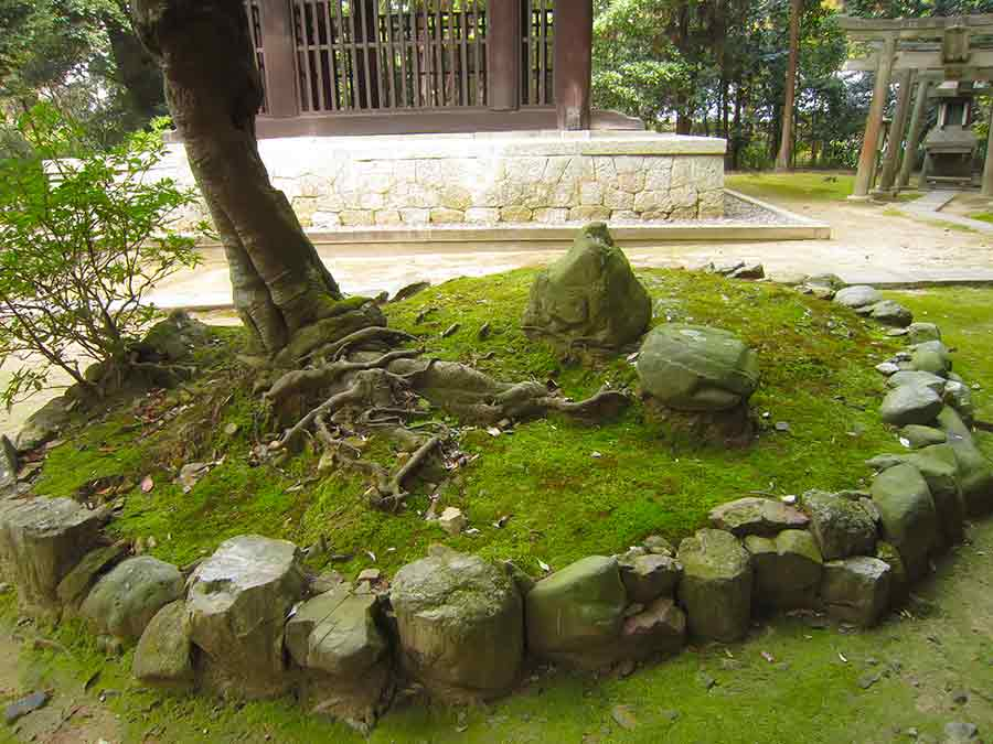 Tree Roots Stones in Tofukuji Zen Garden in Kyoto, photo by Wieslaw Sadurski
